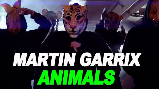 Martin Garrix - Animals(spaceDj Mush Up 2k19)