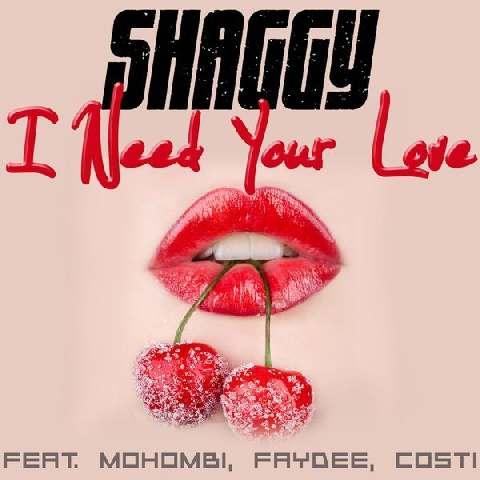 I-Need-Your-Love-Shaggy-Mohombi-Faydee-Costi
